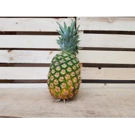 Ananas - 1 Frutto