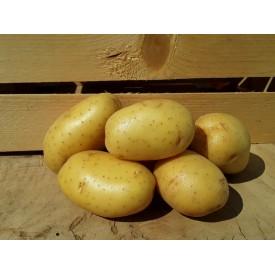 Patate - 1 Kg
