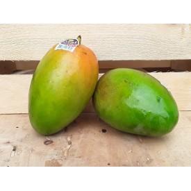 Mango - 1 Frutto