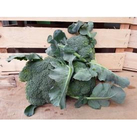 Broccoli - 600 Gr.