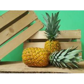 Ananas Gold - 1 Frutto