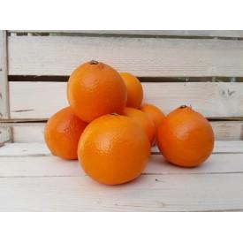 Arance Tarocco - 4 Frutti