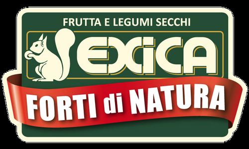 Logo Exica