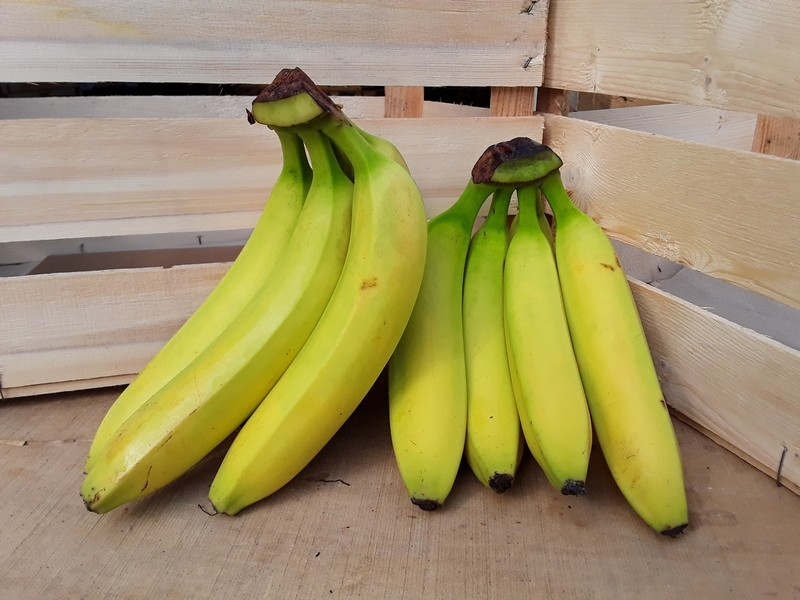 Banane Cassetta Piccola Mista