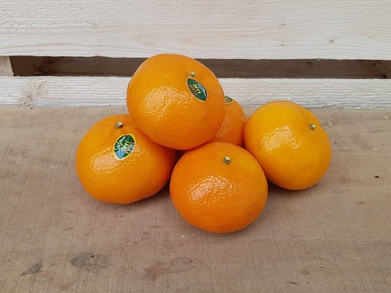 Clementine Cassetta Grande di Frutta