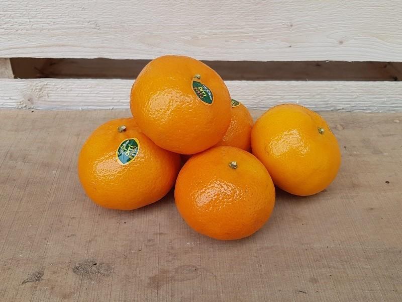 Clementine Cassetta Media di Frutta