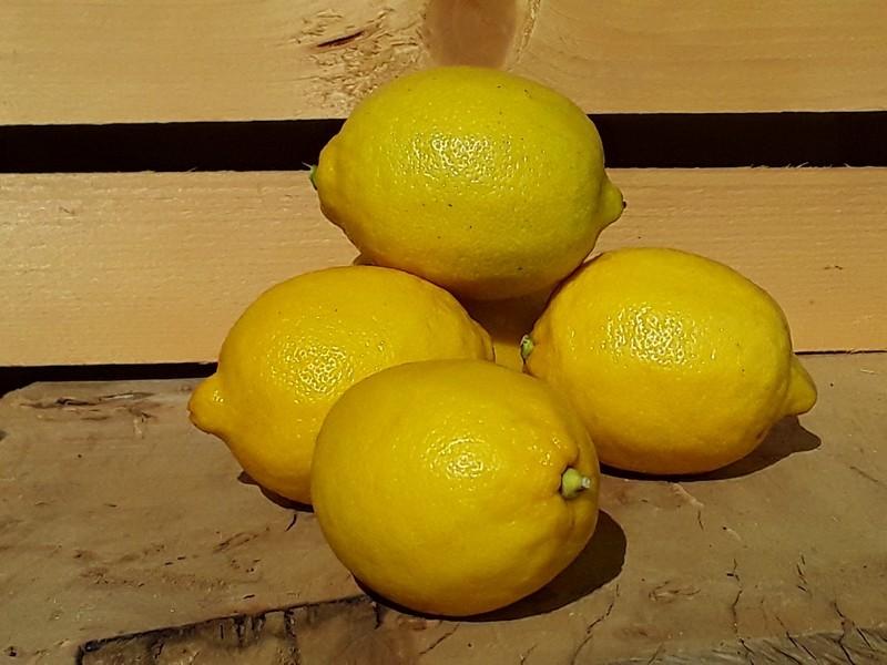 Limoni Cassetta Grande di Frutta