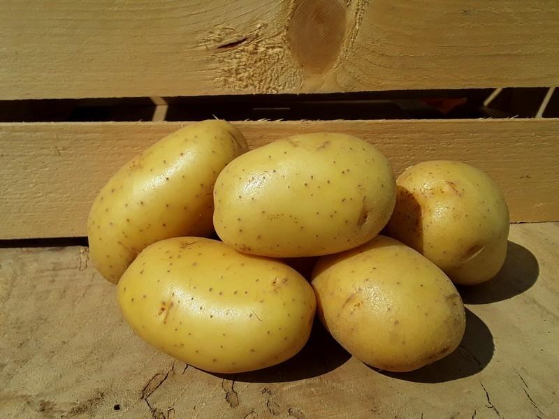 Patate Cassetta Piccola di Verdura