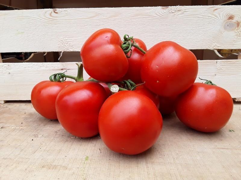 Pomodori Cassetta Piccola di Verdura