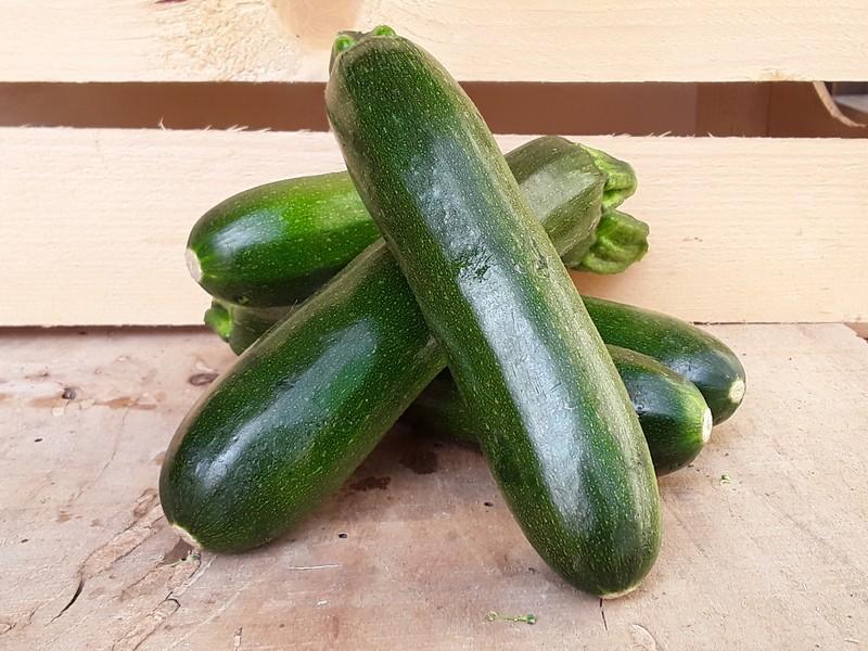 Zucchine Cassetta Piccola di Verdura